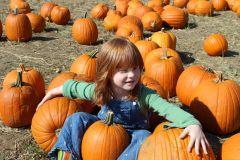 Aura at the pumpkin patch